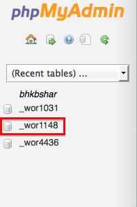 wp-options database